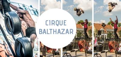 vignette-cirque-balthazar-teyran